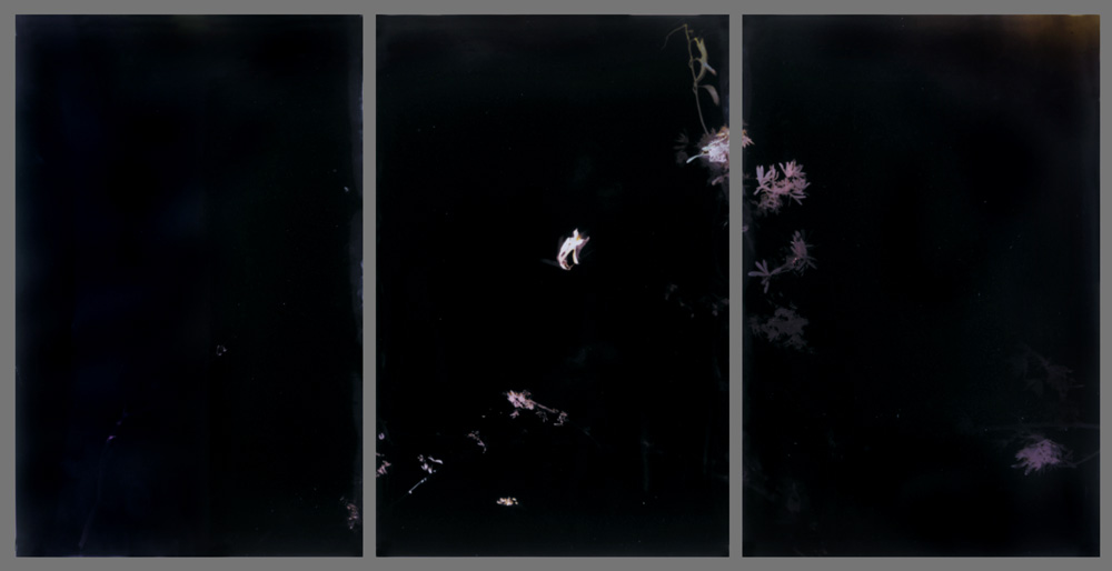 30 x 60 inches (3 panels), Light on photo paper, unique. ©1994